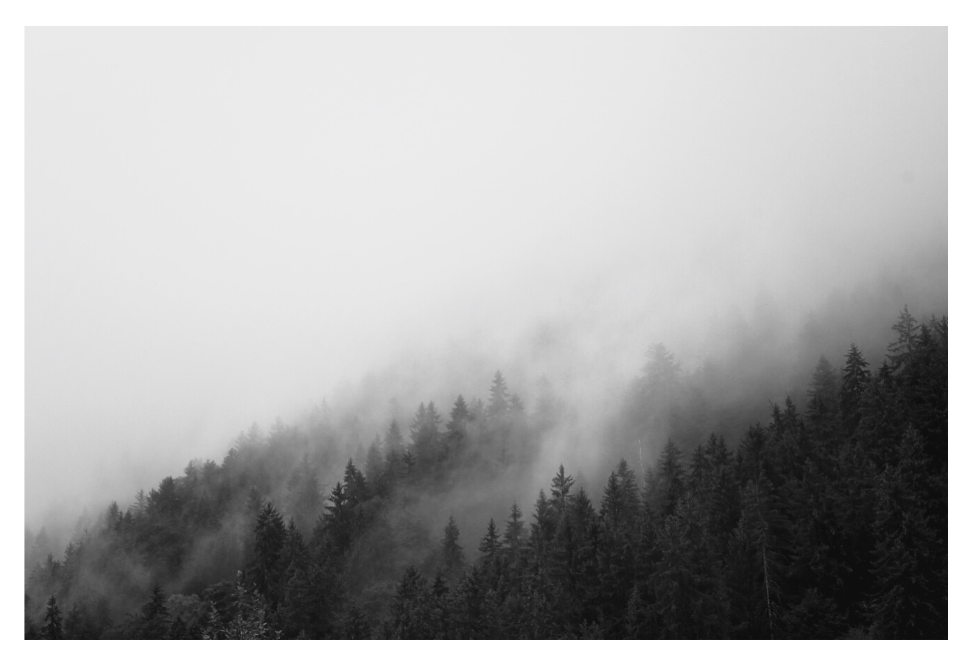 Moody black and white photo of a misty mountain